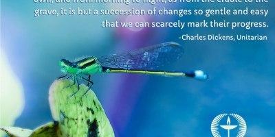 UU Media Collaborative - Dragonfly - Sept 19, 2012